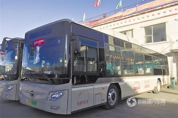 西藏拉萨:128辆新能源公交正式上线运营