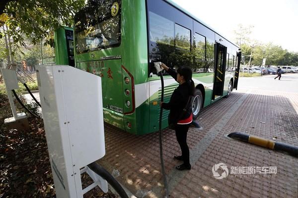 福建泉州:晋江投放16辆纯电动公交