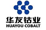 华友钴业全资子公司与LG化学成立合资公司  发力锂电正极材料