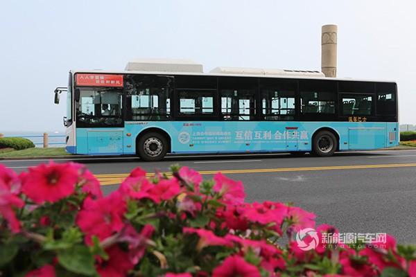 向世界展示绿色名片 比亚迪客车助力上合组织青岛峰会