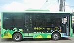 节能、环保、噪音小...电动公交开进浙江小县城