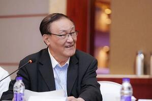 """安庆衡:首次提出""""新汽车产业""""概念,有何玄机?"""