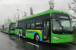全球氢能高速发展--安凯客车助力
